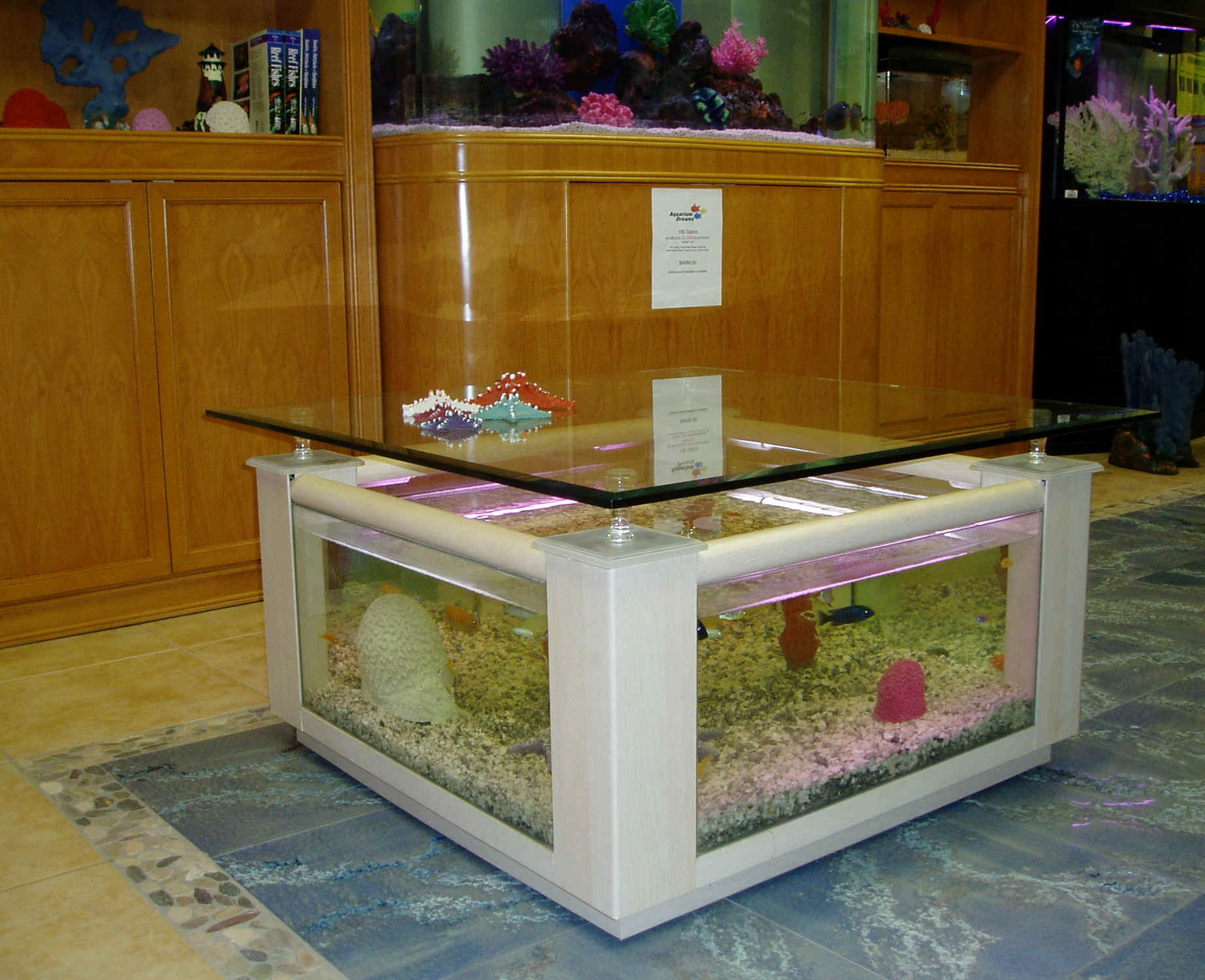 Fish aquarium for sale in karachi - Fish Aquarium Karachi